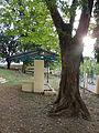 Mayantoc,Tarlacjf8375 13.JPG
