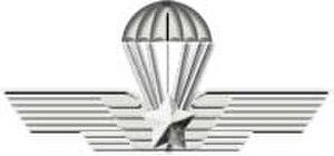 8th Paratroopers Engineers Regiment (Italy) - Image: Me par mil