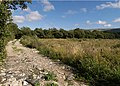 Meadows near Bernahara Road. Isle of Man. - geograph.org.uk - 37637.jpg