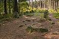 Megalithgrab Everstorfer Forst Nord 6.jpg