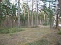 Mezs - panoramio (25).jpg