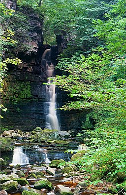 Mill Gill Force - geograph.org.uk - 1546878