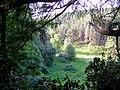 Millbuies Country Park - geograph.org.uk - 1346375.jpg