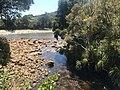 Mine Creek downstream.jpg