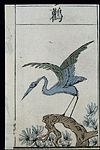 Ming herbal (painting); Stork Wellcome L0039448.jpg
