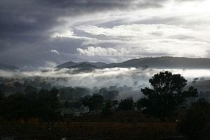 Morning - Morning mist