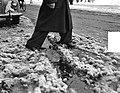 Moddergenoegens. Man stapt door moddersneeuw, Bestanddeelnr 904-9553.jpg