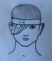 Monoculus bandage.png