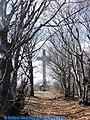 Monte Beigua - verso la grande croce, via crucis - panoramio - Stefano Mazzone.jpg