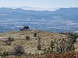Montes de Vitoria - Pagogan 03.jpg