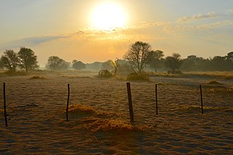 Morning - Morning, just after sunrise on a farm in Namibia (2014)