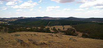 Mount Crawford (South Australia) - Image: Mount Crawford Forest