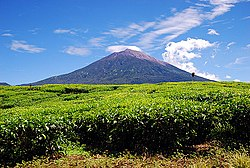 Mount Kerinci, the highest peak in the Sumatra Island