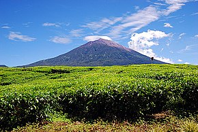 Mount Kerinci, the highest peak in Sumatra Island