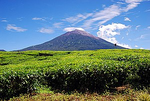 Jambi - Mount Kerinci, the highest peak in Sumatra Island