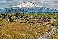 Mount Shasta (1).jpg