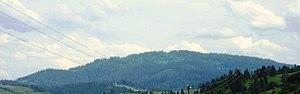 Skole Raion - Image: Mt. Trostyan (1235 m)