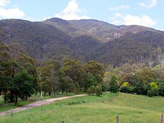 Mumbulla Mountain von Princes Highway aus