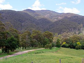 Mumbulla Mountain from Princes Highway.JPG