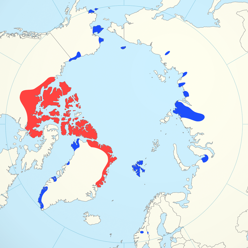 Muskox distribution combined