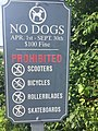 NO DOGS sign in Maine.jpg