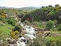 Nahal Sa'ar near Massade - Golan Heights.jpg