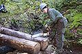 National Public Lands Day 2014 at Mount Rainier National Park (069), Narada.jpg