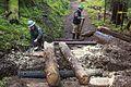 National Public Lands Day 2014 at Mount Rainier National Park (070), Narada.jpg