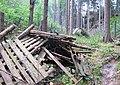 Nature reserve Pavlinino udoli (010).jpg
