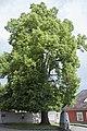 Nd521 Kaiser-Linde Leonding 01.jpg