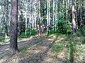 Nevyanskiy r-n, Sverdlovskaya oblast', Russia - panoramio (73).jpg