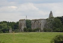 Newark Priory ruins.jpg