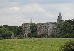 Newark Priory - The remains of Newark Priory