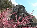 Nihonji daibutsu and Prunus DSCN2878 20120314.JPG