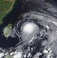 Noguri 2002-06-09 Terra.jpg