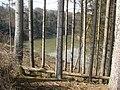 Nur die Illerhänge sind dicht bewaldet. - panoramio.jpg