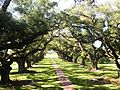OakAlleyPlantation6.jpg