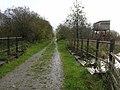 Old railway bridge over the Afon Fflur - geograph.org.uk - 668678.jpg