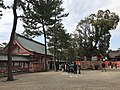Omoto Shrine and Camphor tree in Hongu Area of Sumiyoshi Grand Shrine.jpg