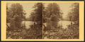 On Lycoming Creek, Pa, by Moran, John, 1831-1903 3.png