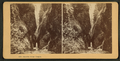 Oneonta Gorge, Oregon, from Robert N. Dennis collection of stereoscopic views.png