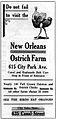 Ostrich Farm City Park NOLA.jpg