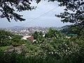 Otakecho Yumi, Otake, Hiroshima Prefecture 739-0600, Japan - panoramio.jpg