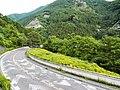 Otaki, Chichibu, Saitama Prefecture 369-1901, Japan - panoramio (3).jpg