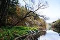 Otava river - panoramio.jpg