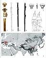 Pannonian Avar swords style distribution.jpg