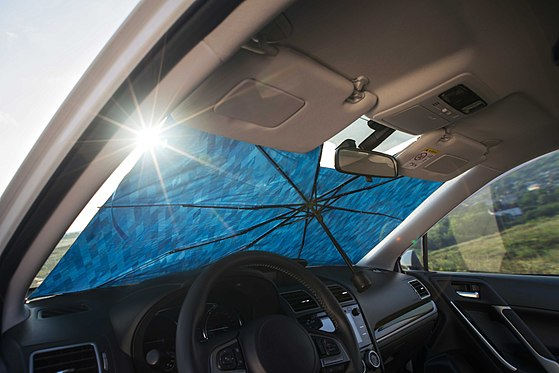 Parasol for car interior picture 1