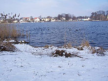 Park Babelsberg Havel Winter.jpg
