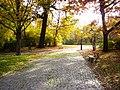 Park Zrodliska3.jpg