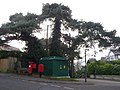 Parkstone, postbox No. BH14 56, Spur Hill Avenue - geograph.org.uk - 1114303.jpg